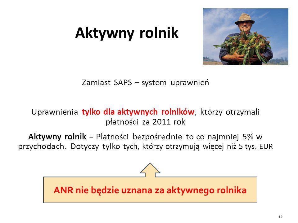 Zamiast SAPS – system uprawnień Uprawnienia tylko dla aktywnych rolników, którzy otrzymali płatności za 2011 rok Aktywny rolnik = Płatności bezpośredn