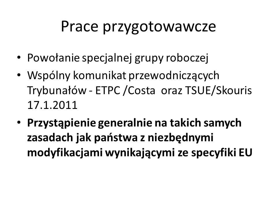 Prace przygotowawcze Powołanie specjalnej grupy roboczej Wspólny komunikat przewodniczących Trybunałów - ETPC /Costa oraz TSUE/Skouris 17.1.2011 Przys