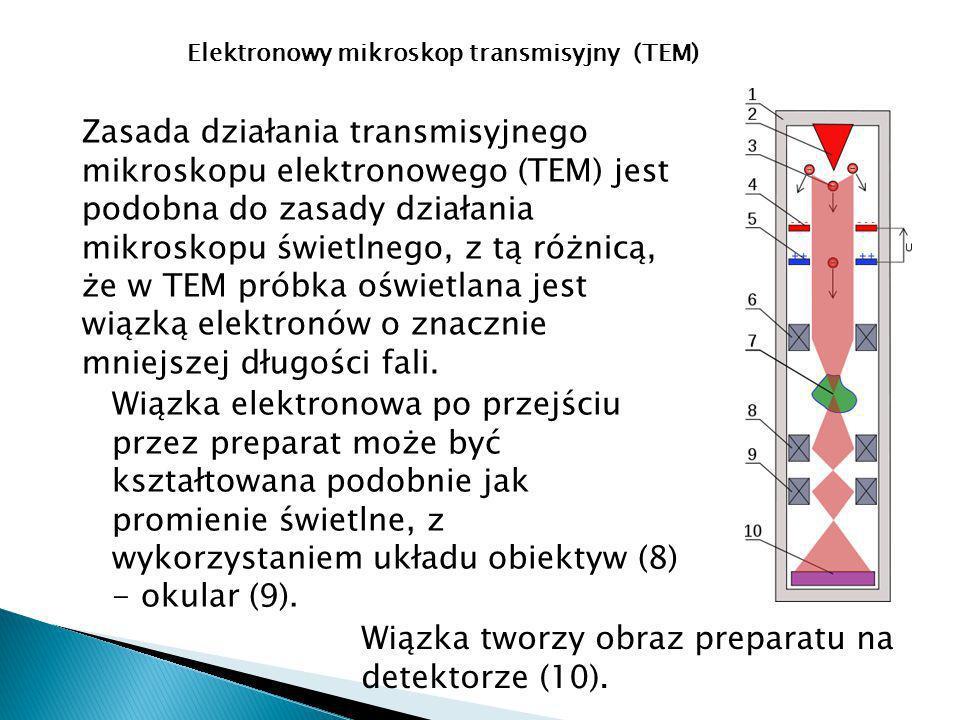 Zasada działania transmisyjnego mikroskopu elektronowego (TEM) jest podobna do zasady działania mikroskopu świetlnego, z tą różnicą, że w TEM próbka oświetlana jest wiązką elektronów o znacznie mniejszej długości fali.