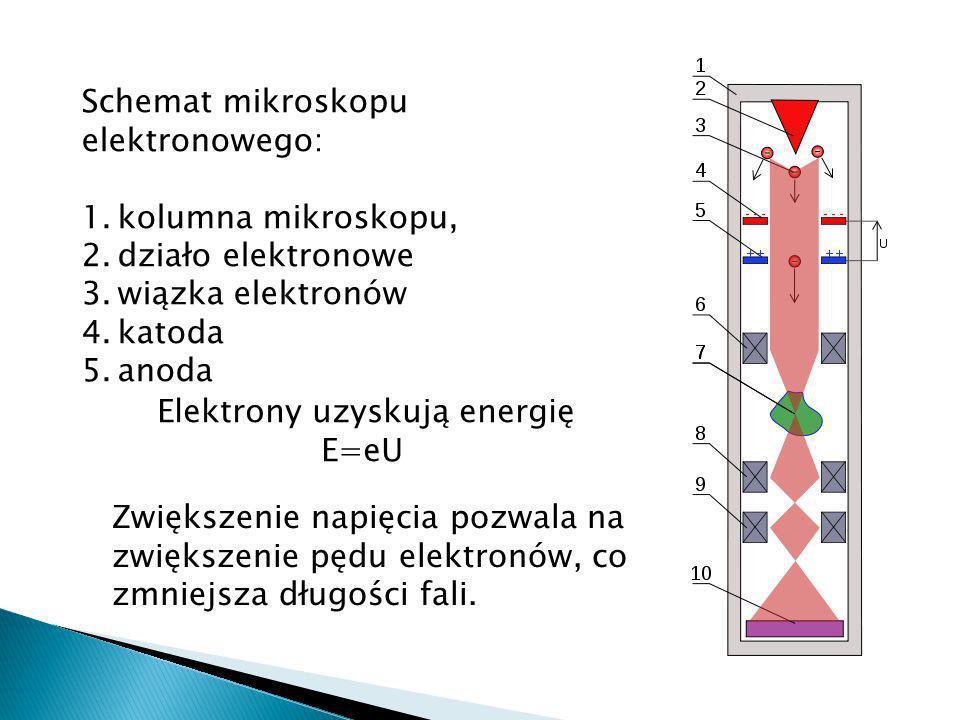 Schemat mikroskopu elektronowego: 1.kolumna mikroskopu, 2.działo elektronowe 3.wiązka elektronów 4.katoda 5.anoda Elektrony uzyskują energię E=eU Zwiększenie napięcia pozwala na zwiększenie pędu elektronów, co zmniejsza długości fali.