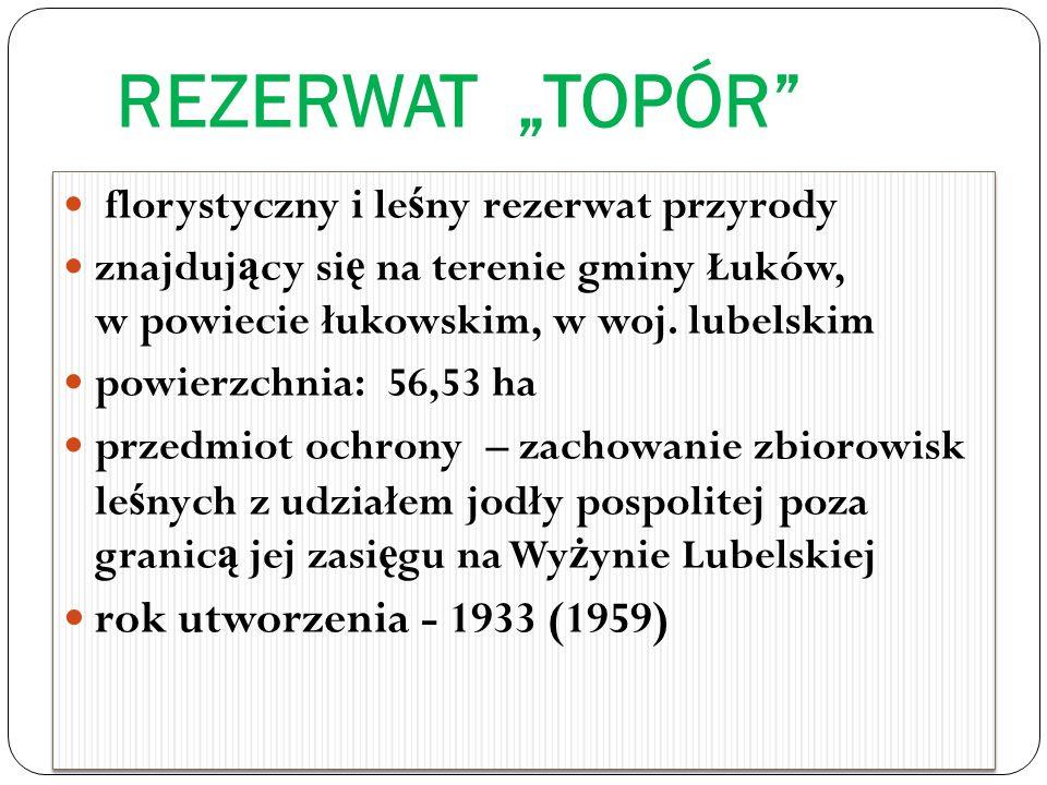 REZERWAT TOPÓR florystyczny i le ś ny rezerwat przyrody znajduj ą cy si ę na terenie gminy Łuków, w powiecie łukowskim, w woj.