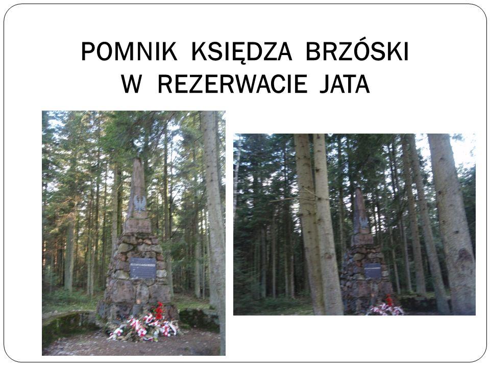 ROŚLINY I ZWIERZĘTA REZERWATU Ro ś liny chronione wyst ę puj ą ce na terenie rezerwatu to m.in.