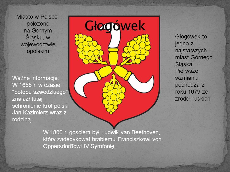 Miasto w Polsce położone na Górnym Śląsku, w województwie opolskim Głogówek to jedno z najstarszych miast Górnego Śląska.