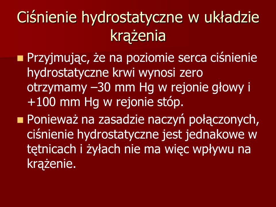 Ciśnienie hydrostatyczne w układzie krążenia Przyjmując, że na poziomie serca ciśnienie hydrostatyczne krwi wynosi zero otrzymamy –30 mm Hg w rejonie