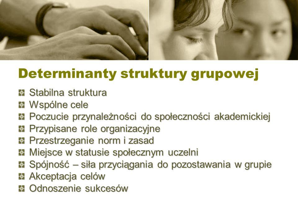 Determinanty struktury grupowej Stabilna struktura Wspólne cele Poczucie przynależności do społeczności akademickiej Przypisane role organizacyjne Prz