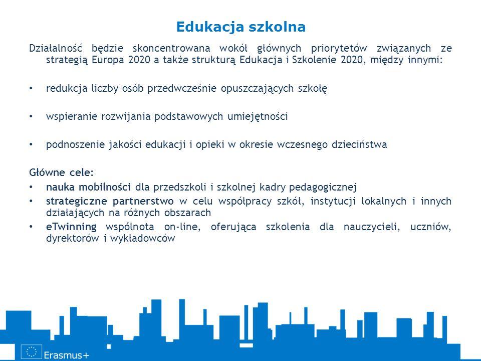 Działalność będzie skoncentrowana wokół głównych priorytetów związanych ze strategią Europa 2020 a także strukturą Edukacja i Szkolenie 2020, między i