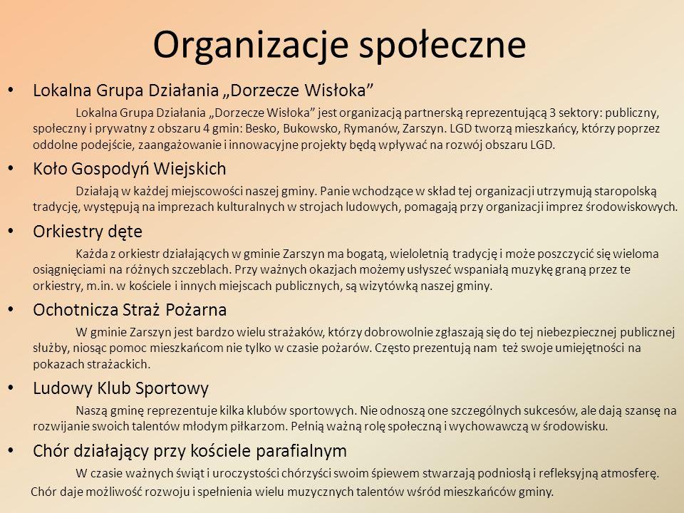 Organizacje społeczne Lokalna Grupa Działania Dorzecze Wisłoka Lokalna Grupa Działania Dorzecze Wisłoka jest organizacją partnerską reprezentującą 3 s