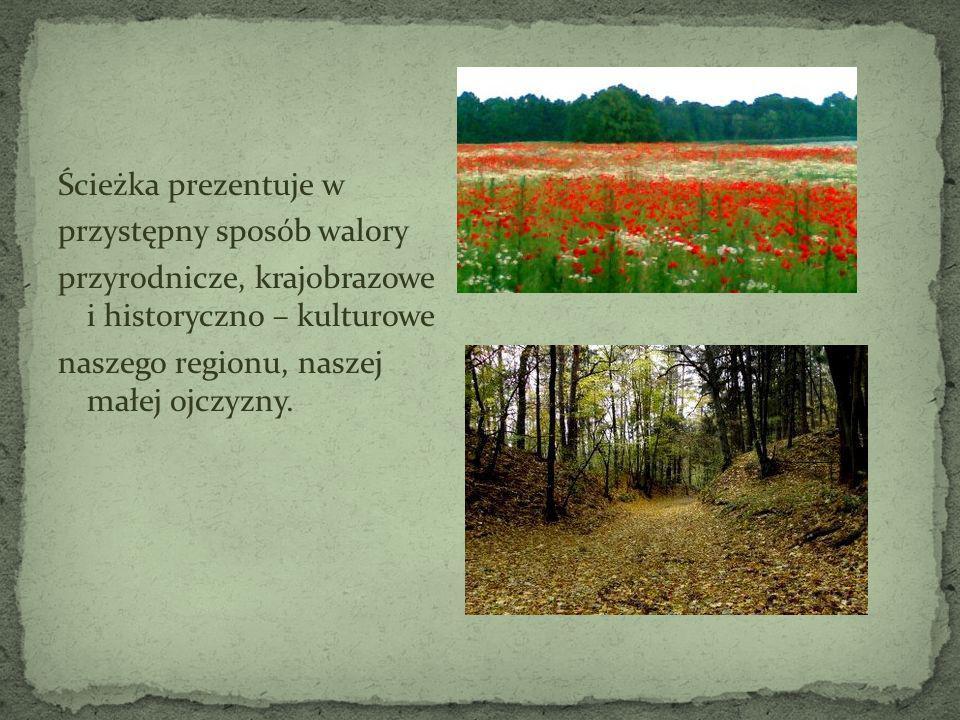 Ścieżka prezentuje w przystępny sposób walory przyrodnicze, krajobrazowe i historyczno – kulturowe naszego regionu, naszej małej ojczyzny.