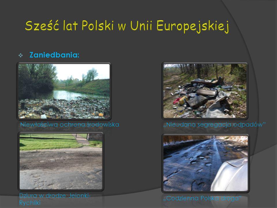 Zaniedbania: Niewłaściwa ochrona środowiskaNieudana segregacja odpadów Dziura w drodze Jelonki- Rychliki Codzienna Polska droga