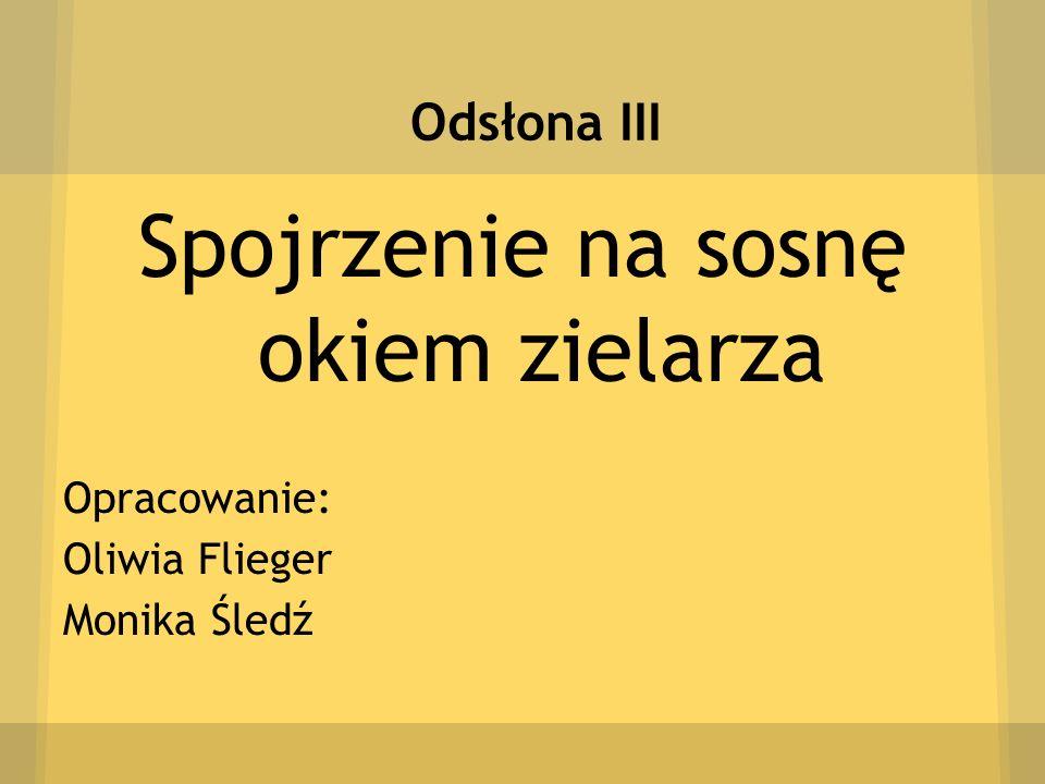 Odsłona III Spojrzenie na sosnę okiem zielarza Opracowanie: Oliwia Flieger Monika Śledź