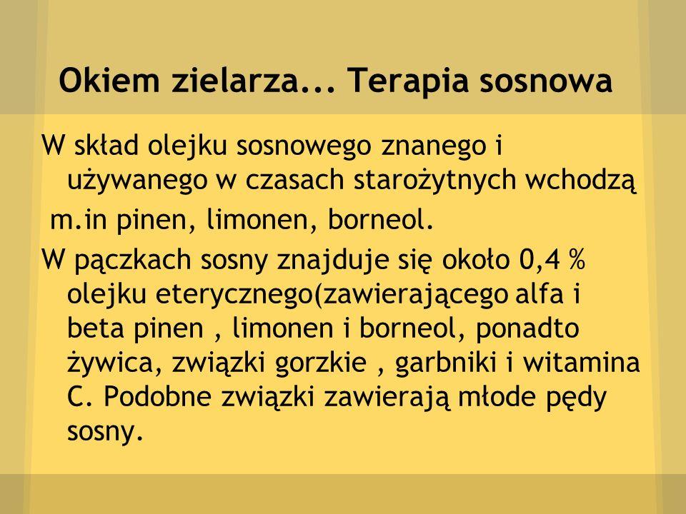 Okiem zielarza... Terapia sosnowa W skład olejku sosnowego znanego i używanego w czasach starożytnych wchodzą m.in pinen, limonen, borneol. W pączkach