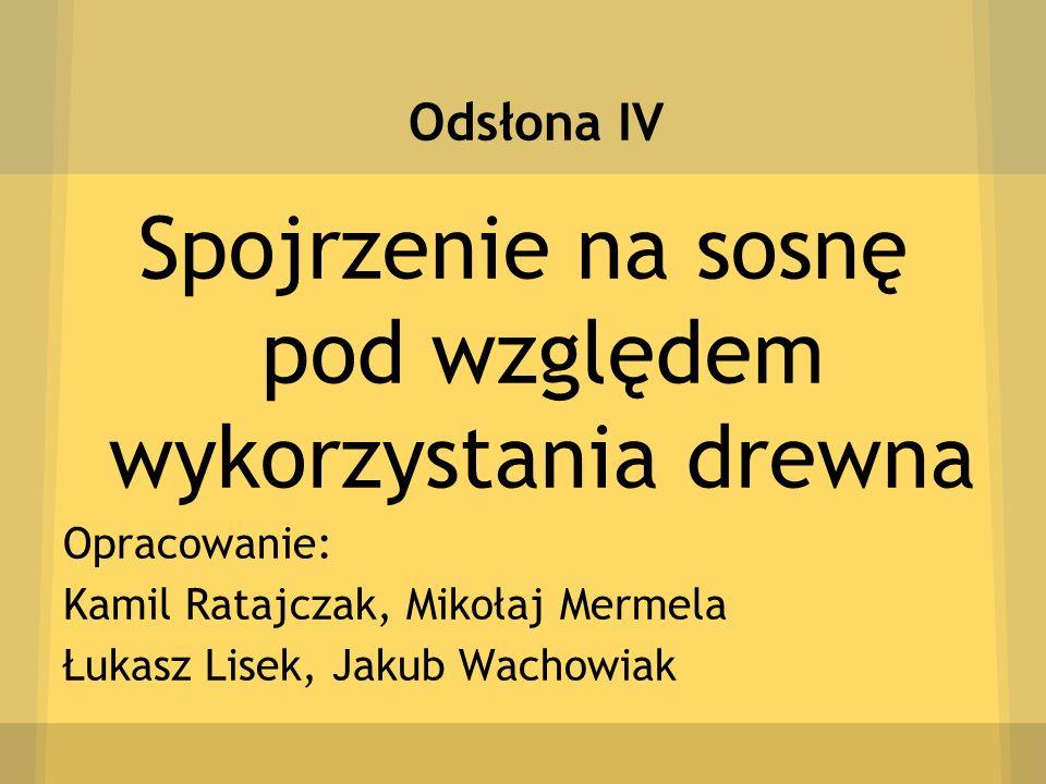 Odsłona IV Spojrzenie na sosnę pod względem wykorzystania drewna Opracowanie: Kamil Ratajczak, Mikołaj Mermela Łukasz Lisek, Jakub Wachowiak