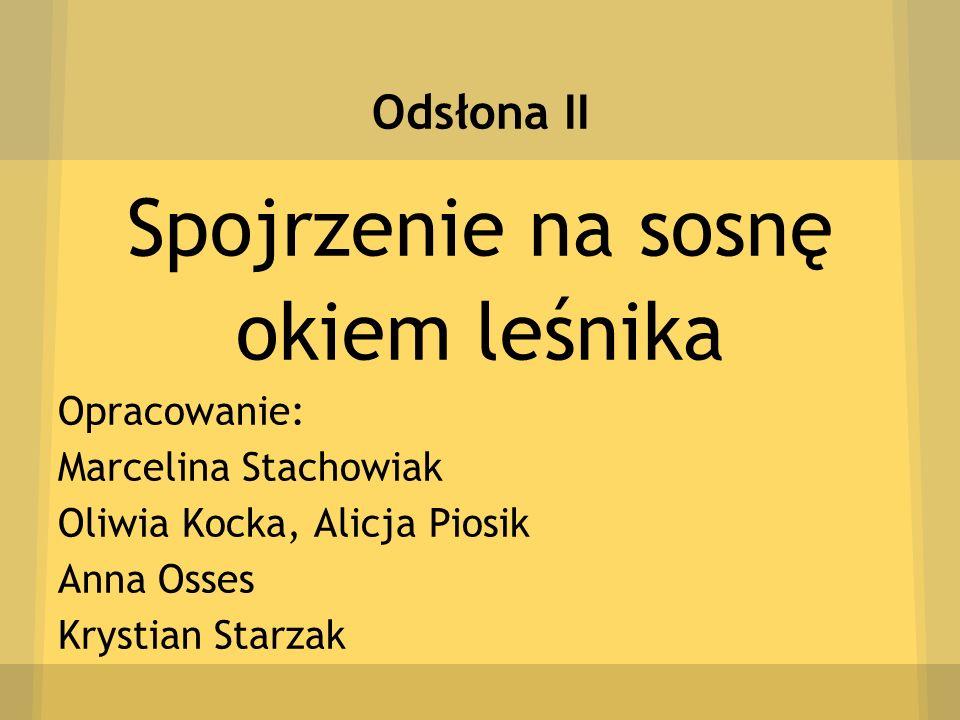 Odsłona II Spojrzenie na sosnę okiem leśnika Opracowanie: Marcelina Stachowiak Oliwia Kocka, Alicja Piosik Anna Osses Krystian Starzak