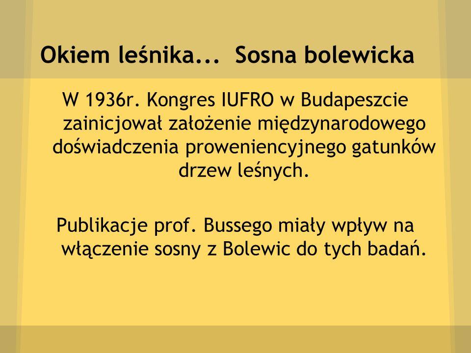 Okiem leśnika... Sosna bolewicka W 1936r. Kongres IUFRO w Budapeszcie zainicjował założenie międzynarodowego doświadczenia proweniencyjnego gatunków d