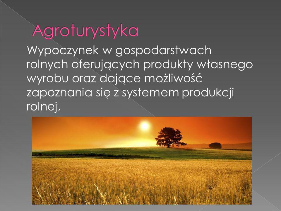 Wypoczynek w gospodarstwach rolnych oferujących produkty własnego wyrobu oraz dające możliwość zapoznania się z systemem produkcji rolnej,