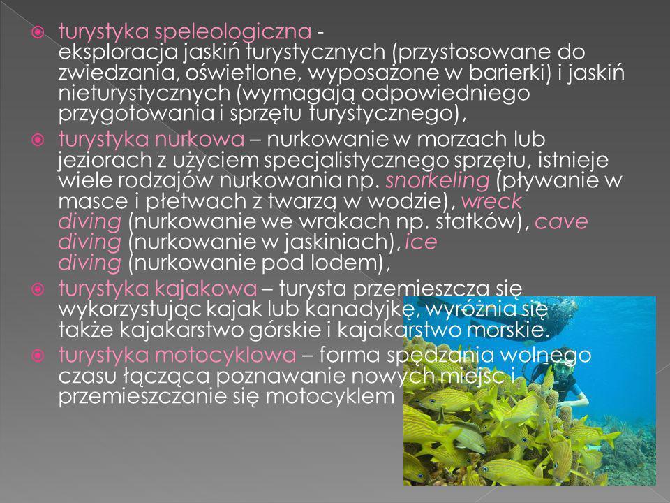 turystyka speleologiczna - eksploracja jaskiń turystycznych (przystosowane do zwiedzania, oświetlone, wyposażone w barierki) i jaskiń nieturystycznych (wymagają odpowiedniego przygotowania i sprzętu turystycznego), turystyka nurkowa – nurkowanie w morzach lub jeziorach z użyciem specjalistycznego sprzętu, istnieje wiele rodzajów nurkowania np.