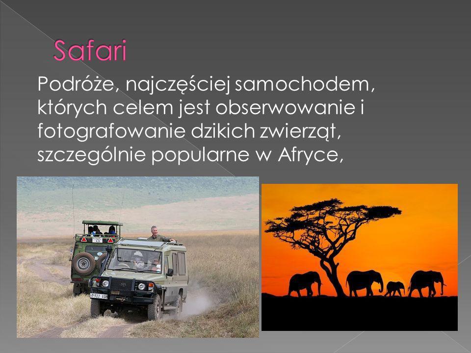 Podróże, najczęściej samochodem, których celem jest obserwowanie i fotografowanie dzikich zwierząt, szczególnie popularne w Afryce,