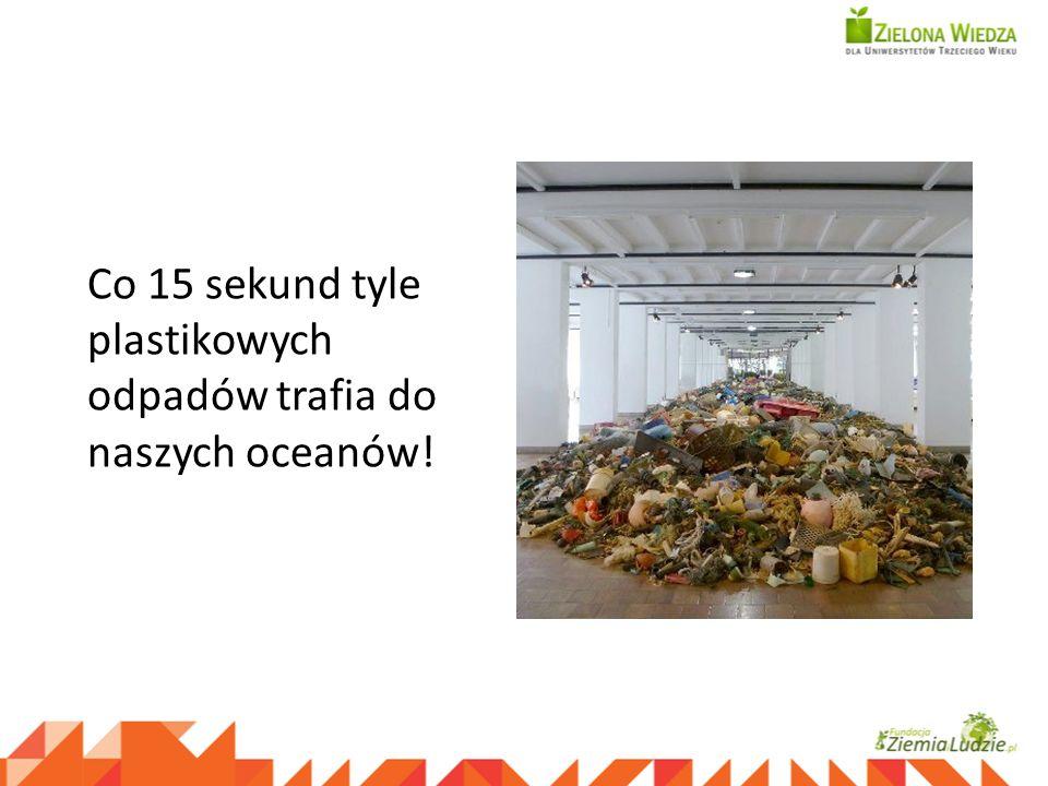 Co 15 sekund tyle plastikowych odpadów trafia do naszych oceanów!
