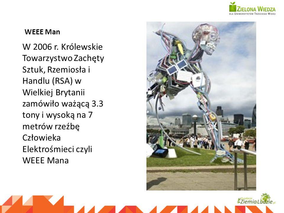 WEEE Man W 2006 r. Królewskie Towarzystwo Zachęty Sztuk, Rzemiosła i Handlu (RSA) w Wielkiej Brytanii zamówiło ważącą 3.3 tony i wysoką na 7 metrów rz
