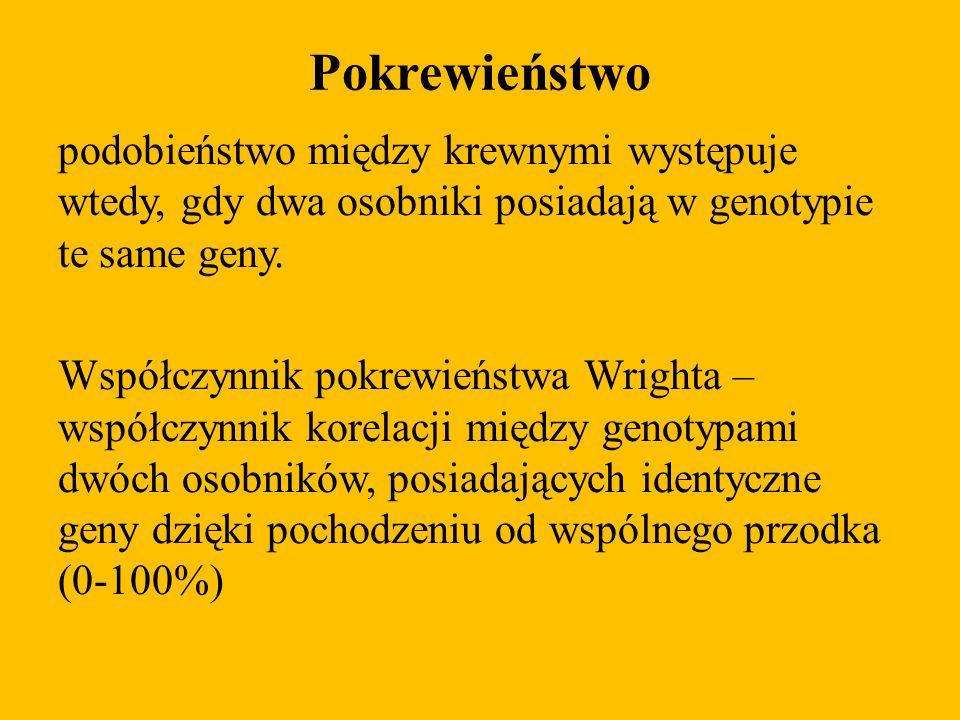 Pokrewieństwo podobieństwo między krewnymi występuje wtedy, gdy dwa osobniki posiadają w genotypie te same geny. Współczynnik pokrewieństwa Wrighta –