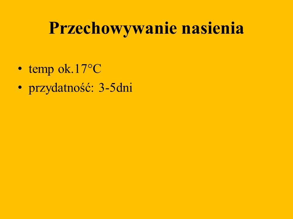 Przechowywanie nasienia temp ok.17°C przydatność: 3-5dni