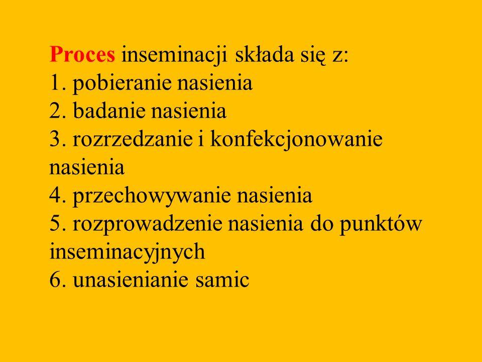 Proces inseminacji składa się z: 1. pobieranie nasienia 2. badanie nasienia 3. rozrzedzanie i konfekcjonowanie nasienia 4. przechowywanie nasienia 5.
