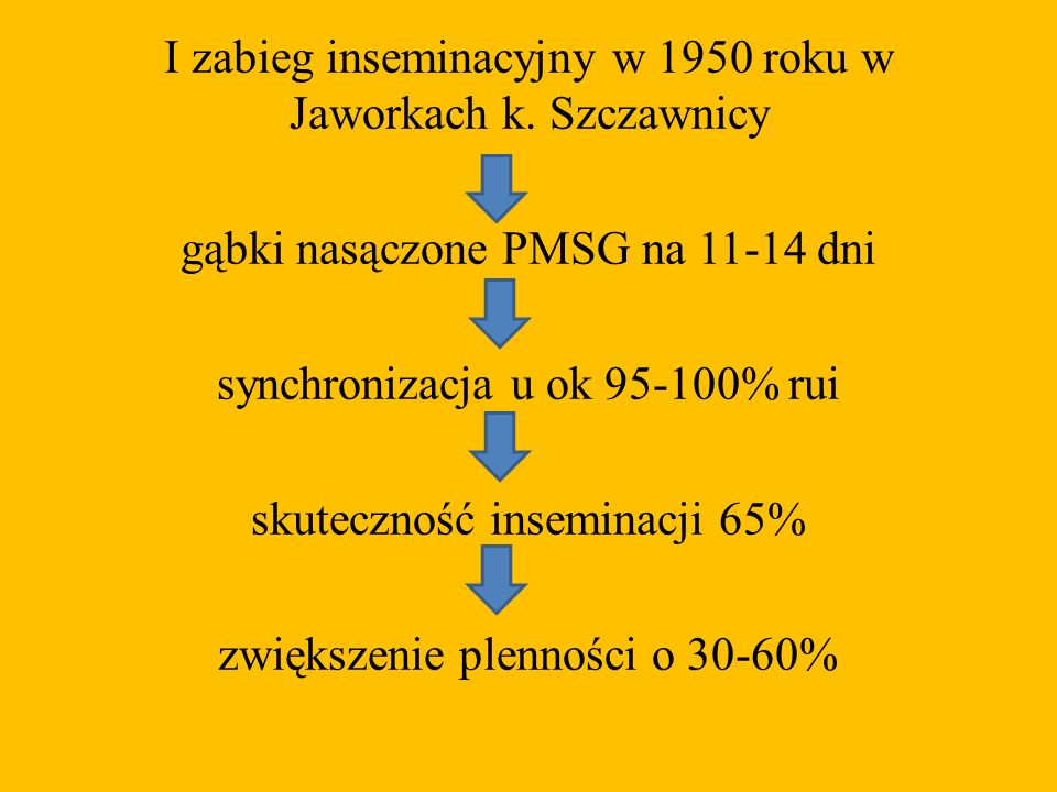 I zabieg inseminacyjny w 1950 roku w Jaworkach k. Szczawnicy gąbki nasączone PMSG na 11-14 dni synchronizacja u ok 95-100% rui skuteczność inseminacji