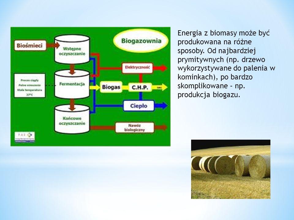 Energia z biomasy może być produkowana na różne sposoby. Od najbardziej prymitywnych (np. drzewo wykorzystywane do palenia w kominkach), po bardzo sko