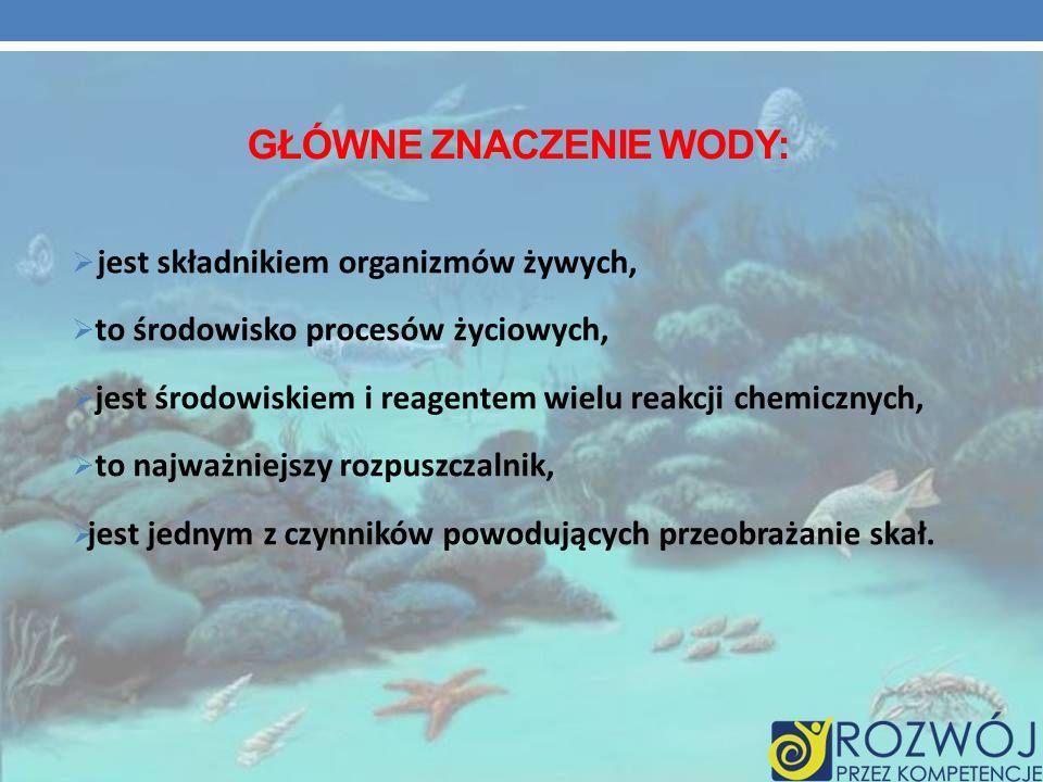 GŁÓWNE ZNACZENIE WODY: jest składnikiem organizmów żywych, to środowisko procesów życiowych, jest środowiskiem i reagentem wielu reakcji chemicznych,
