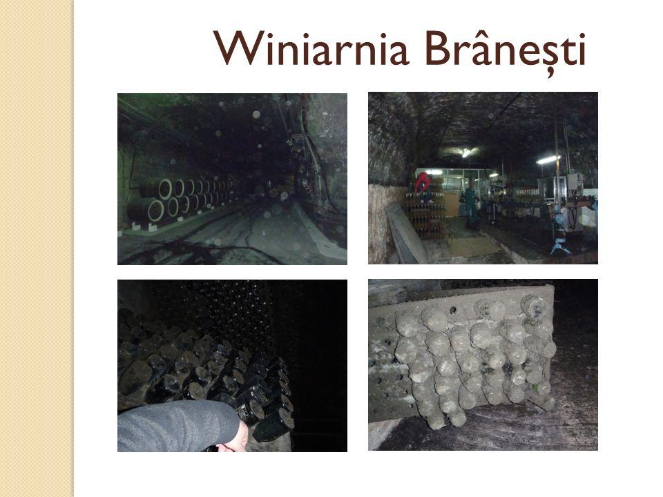 Winiarnia Brâneşti