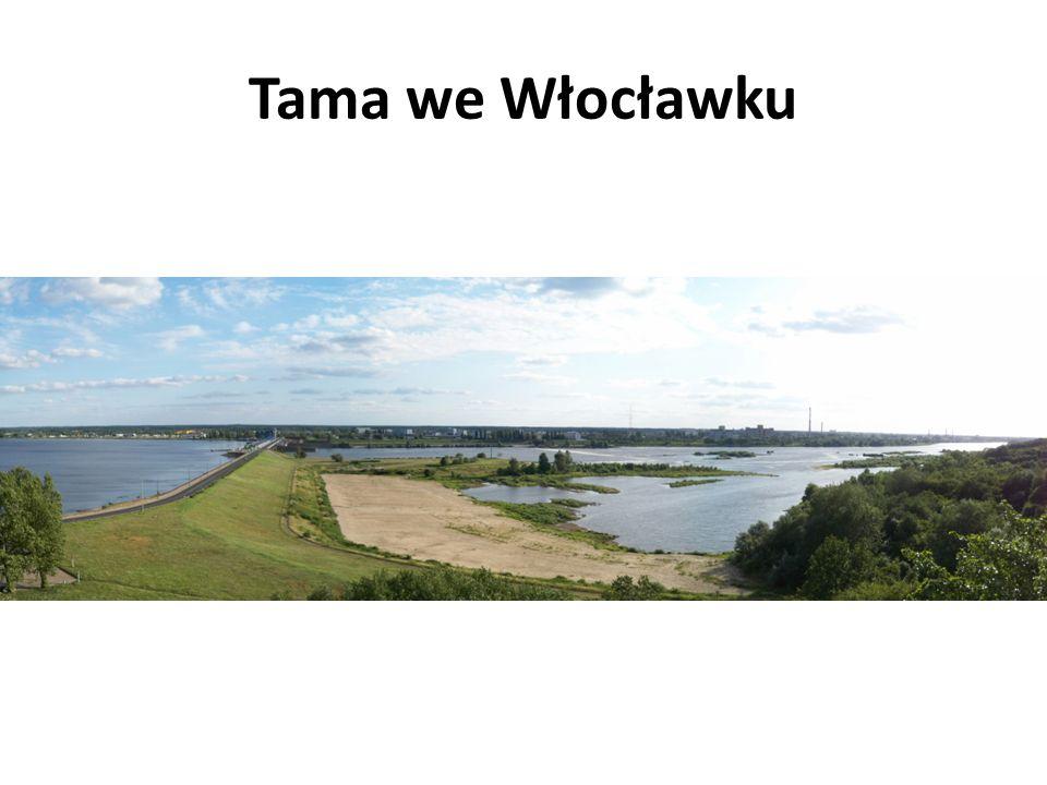 Tama we Włocławku