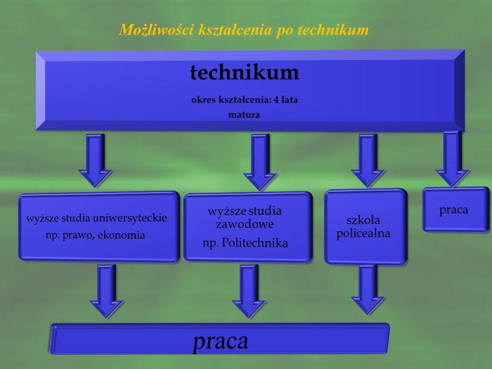W Powiecie Buskim licea ogólnokształcące oferują kształcenie w oddziałach z przedmiotami w zakresie rozszerzonym: IV Liceum Ogólnokształcące w Zespole Szkół Techniczno – Informatycznych Al.