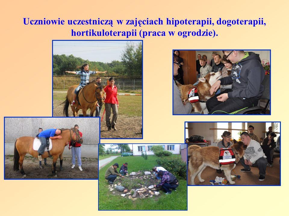 Uczniowie uczestniczą w zajęciach hipoterapii, dogoterapii, hortikuloterapii (praca w ogrodzie).
