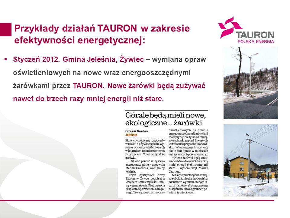 19 Przykłady działań TAURON w zakresie efektywności energetycznej: Styczeń 2012, Gmina Jeleśnia, Żywiec – wymiana opraw oświetleniowych na nowe wraz e