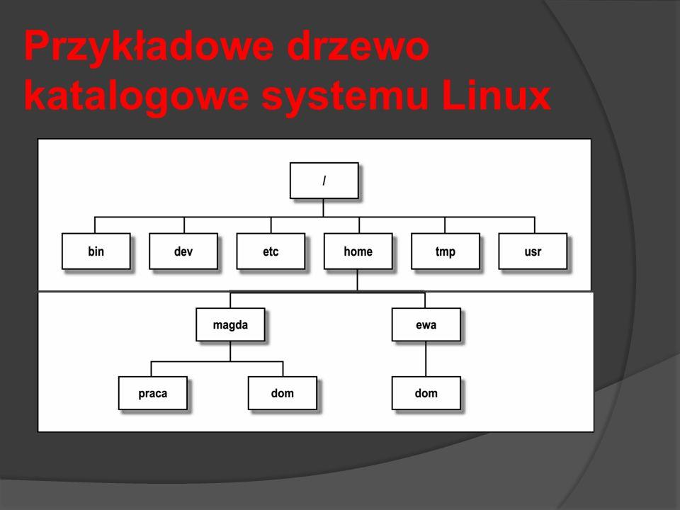 Przykładowe drzewo katalogowe systemu Linux