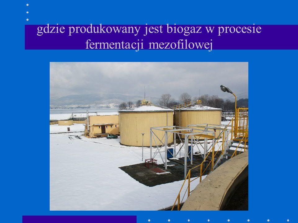 gdzie produkowany jest biogaz w procesie fermentacji mezofilowej