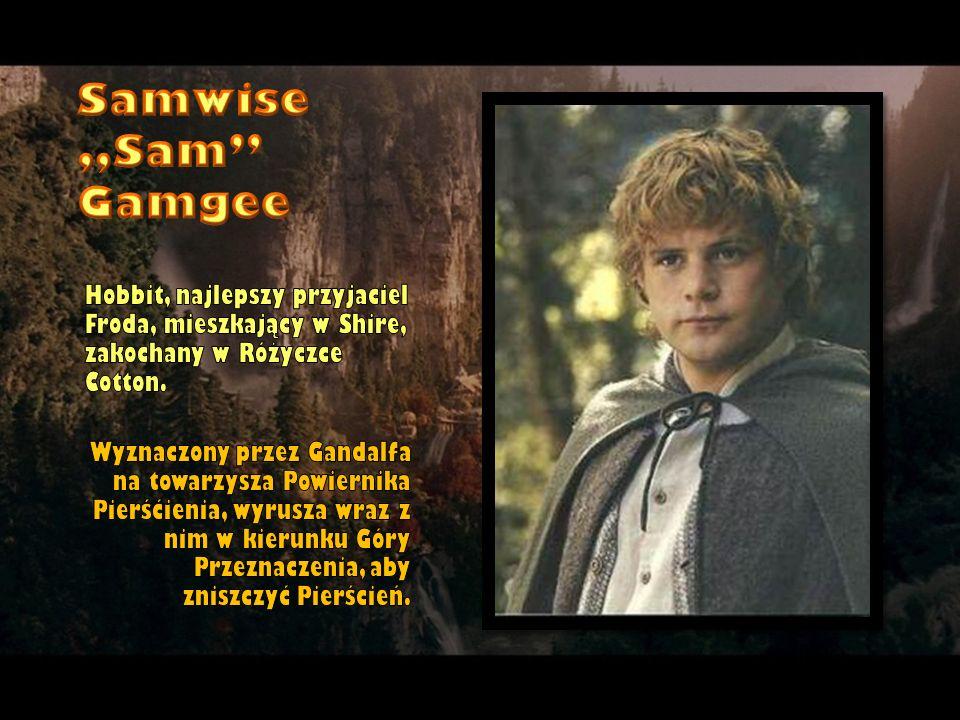 Hobbit, najlepszy przyjaciel Froda, mieszkający w Shire, zakochany w Różyczce Cotton. Wyznaczony przez Gandalfa na towarzysza Powiernika Pierśćienia,