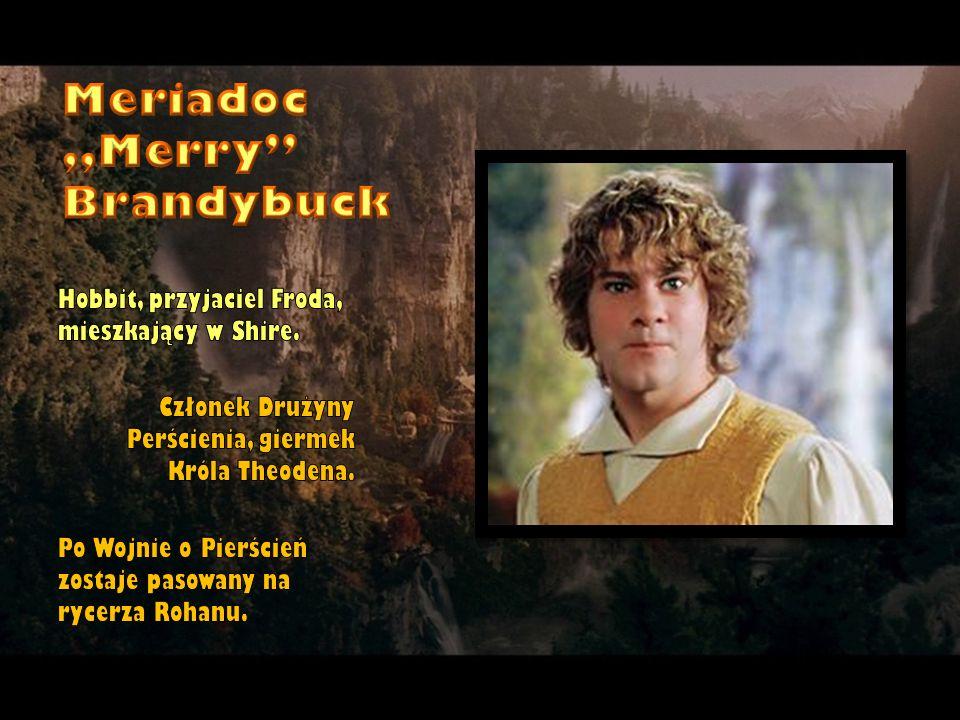 Hobbit, przyjaciel Froda, mieszkający w Shire. Członek Drużyny Perścienia, giermek Króla Theodena. Po Wojnie o Pierścień zostaje pasowany na rycerza R