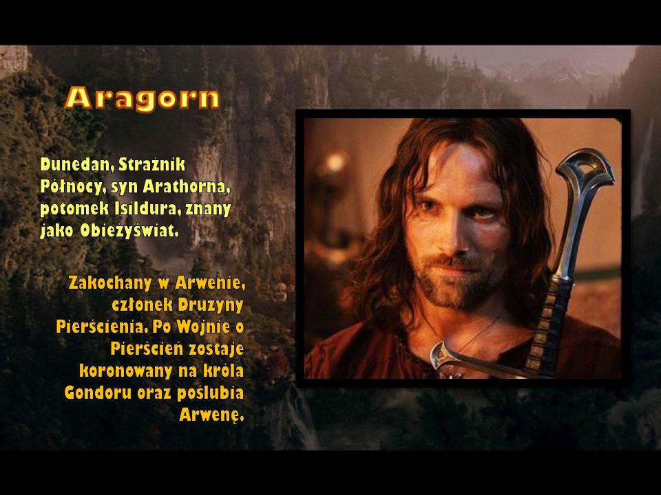 Dunedan, Strażnik Północy, syn Arathorna, potomek Isildura, znany jako Obieżyświat. Zakochany w Arwenie, członek Drużyny Pierścienia. Po Wojnie o Pier