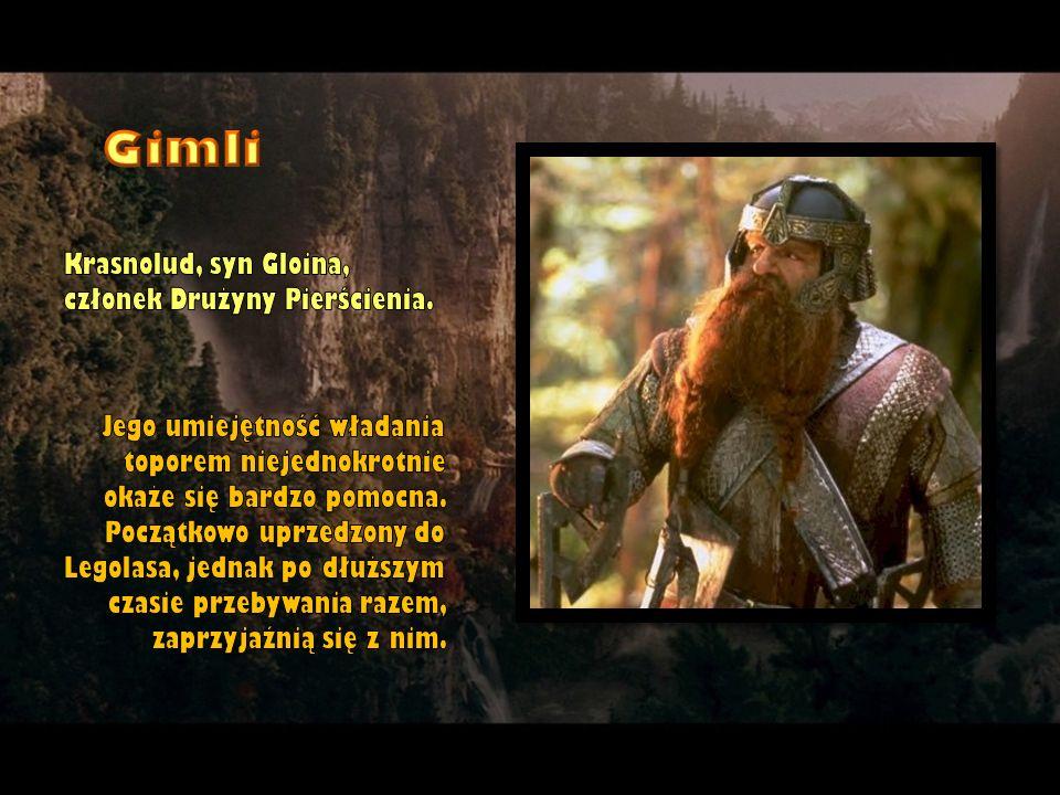 Krasnolud, syn Gloina, członek Drużyny Pierścienia. Jego umiejętność władania toporem niejednokrotnie okaże się bardzo pomocna. Początkowo uprzedzony