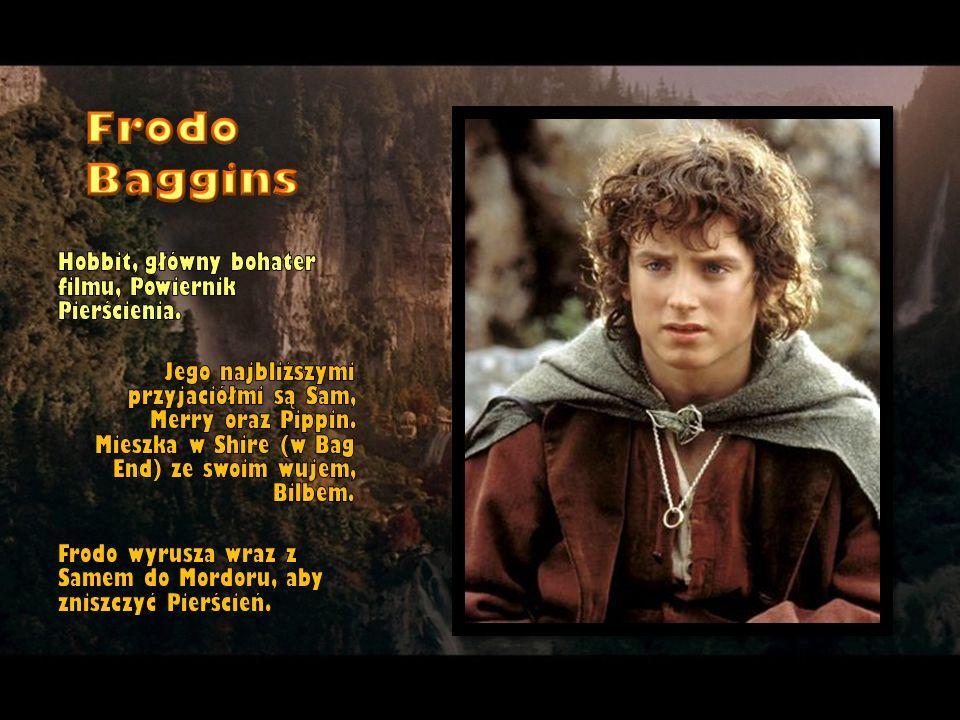 Hobbit, główny bohater filmu, Powiernik Pierścienia. Jego najbliższymi przyjaciółmi są Sam, Merry oraz Pippin. Mieszka w Shire (w Bag End) ze swoim wu