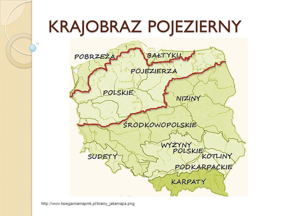 Rolnictwo i Przemysł Najlepsze warunki dla rolnictwa są na Pojezierzu Wielkopolskim.