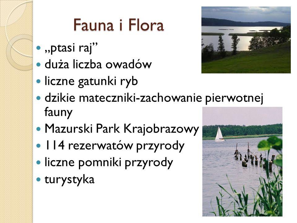 ptasi raj duża liczba owadów liczne gatunki ryb dzikie mateczniki-zachowanie pierwotnej fauny Mazurski Park Krajobrazowy 114 rezerwatów przyrody liczn