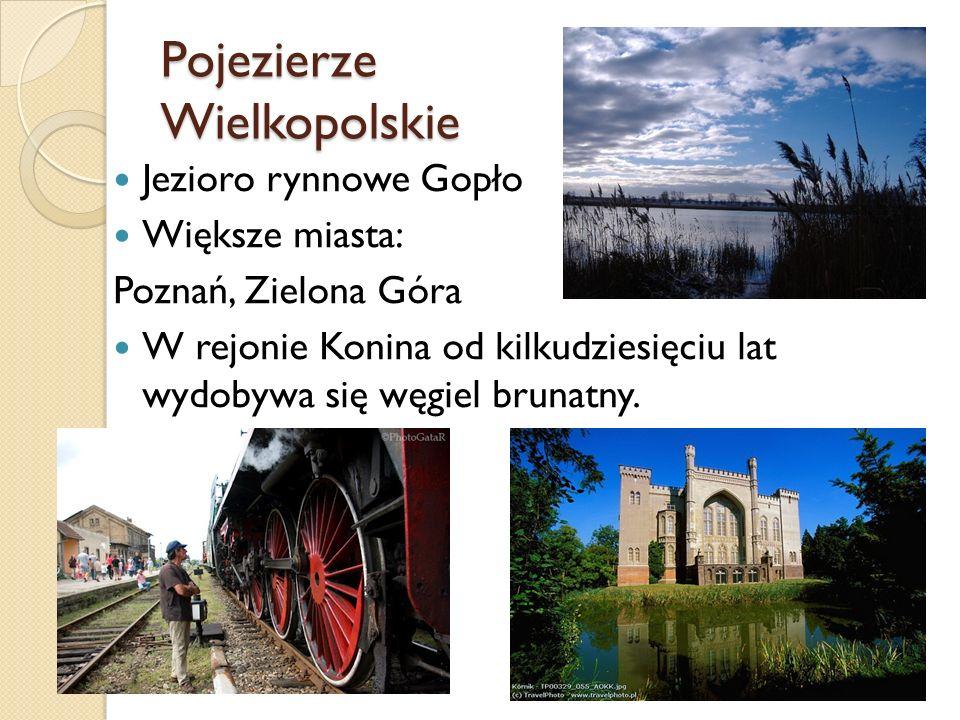 Pojezierze Wielkopolskie Jezioro rynnowe Gopło Większe miasta: Poznań, Zielona Góra W rejonie Konina od kilkudziesięciu lat wydobywa się węgiel brunat