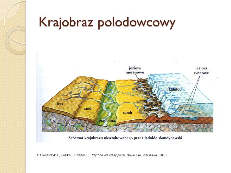 Cechy charakterystyczne krajobrazu W krajobrazie Pojezierzy bardzo wyraźne są ślady ostatniego zlodowacenia: - faliste moreny, - piaszczyste równiny, - obniżenia dolin rzecznych - misy jeziorne.
