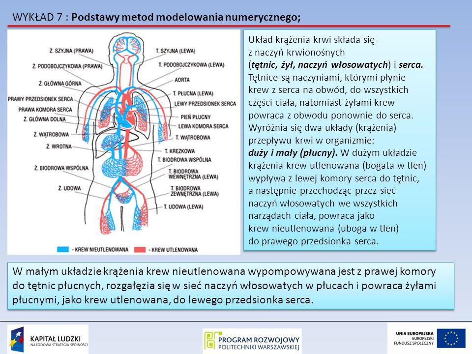 WYKŁAD 7 : Podstawy metod modelowania numerycznego; Układ krążenia krwi składa się z naczyń krwionośnych (tętnic, żył, naczyń włosowatych) i serca. Tę
