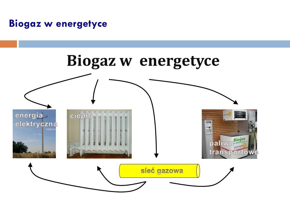 Biogaz w energetyce