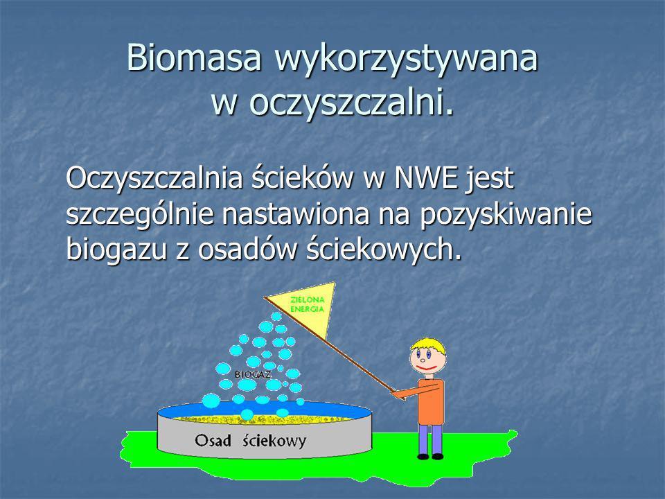Biomasa wykorzystywana w oczyszczalni.