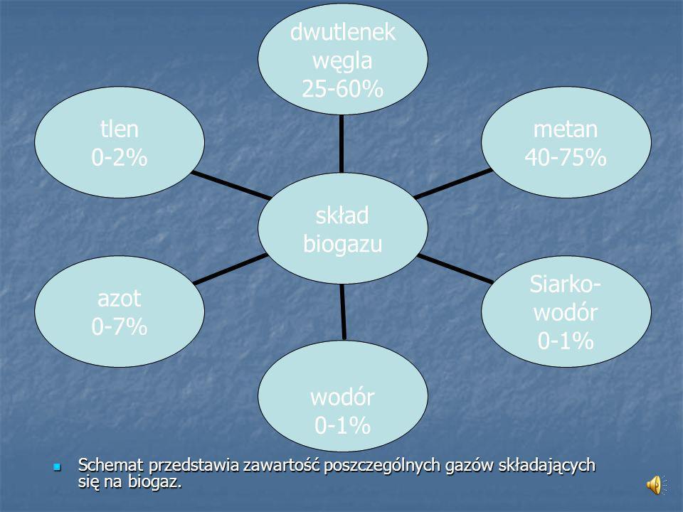 Biogaz Nadający się do celów energetycznych biogaz może powstawać w procesie fermentacji beztlenowej z m.in.
