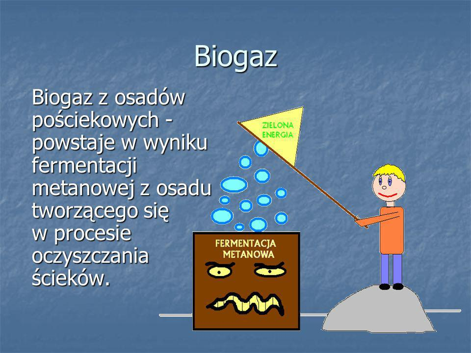 skład biogazu dwutlenek węgla 25-60% metan 40-75% Siarko- wodór 0-1% wodór 0-1% azot 0-7% tlen 0-2% Schemat przedstawia zawartość poszczególnych gazów składających się na biogaz.